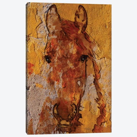 Yellow Horse Canvas Print #ORL121} by Irena Orlov Art Print