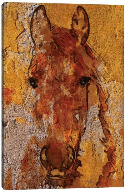 Yellow Horse Canvas Art Print