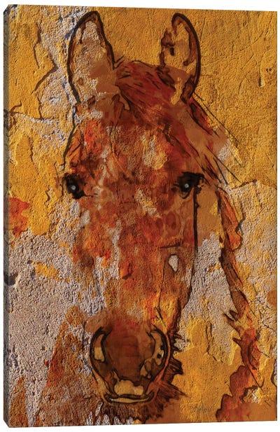 Yellow Horse Canvas Art Print