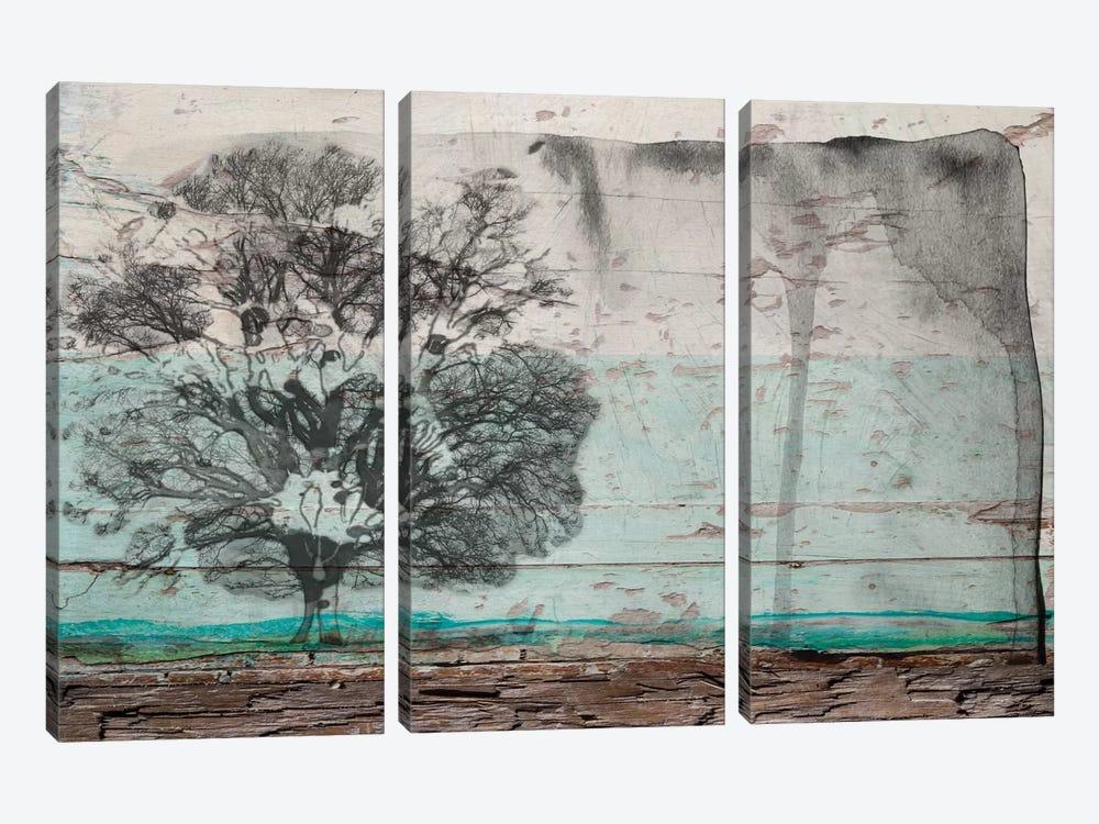 A Clear Transfer by Irena Orlov 3-piece Canvas Artwork