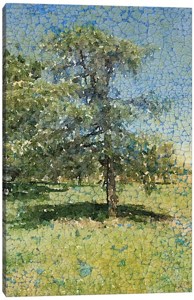 A Summer Afternoon Canvas Art Print