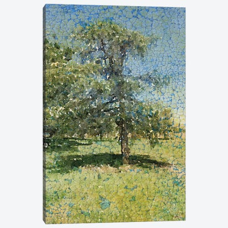 A Summer Afternoon Canvas Print #ORL123} by Irena Orlov Canvas Print