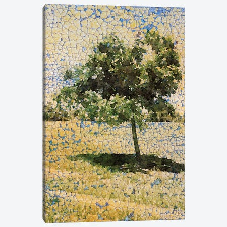 A Sunny Day Canvas Print #ORL124} by Irena Orlov Canvas Wall Art