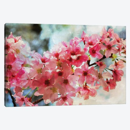 Cherry Flowers III Canvas Print #ORL126} by Irena Orlov Canvas Wall Art