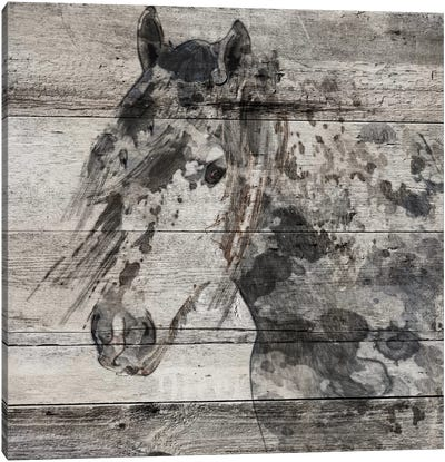 Dark Grey Horse Canvas Art Print