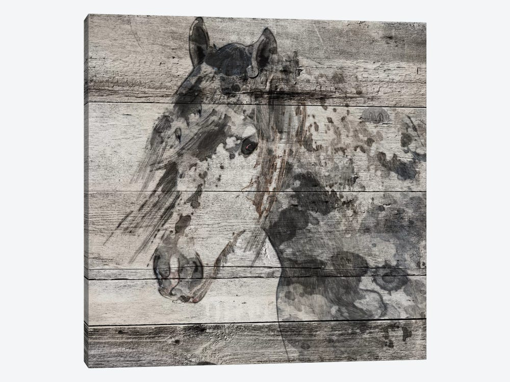 Dark Grey Horse by Irena Orlov 1-piece Canvas Art