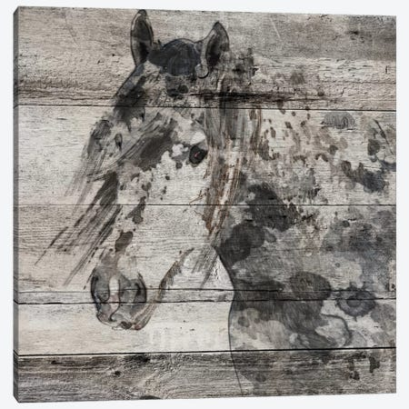 Dark Grey Horse 3-Piece Canvas #ORL128} by Irena Orlov Canvas Art Print