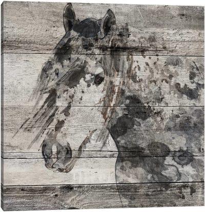 Dark Grey Horse Canvas Art Print