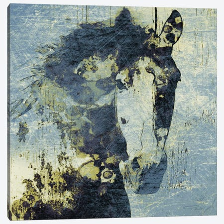 Gorgeous Horse V Canvas Print #ORL130} by Irena Orlov Canvas Art