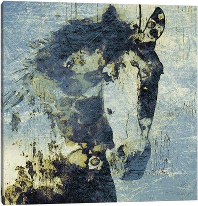 Gorgeous Horse V Canvas Art Print