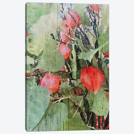 Nature Bea I Canvas Print #ORL134} by Irena Orlov Art Print