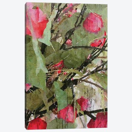 Nature Bea II Canvas Print #ORL135} by Irena Orlov Canvas Art Print