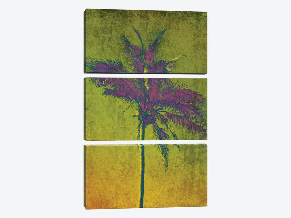 Purple Palm On Green by Irena Orlov 3-piece Canvas Print