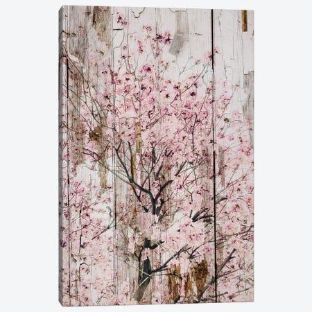 Spring Flowers II 3-Piece Canvas #ORL141} by Irena Orlov Art Print