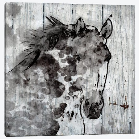 Winter Horse Canvas Print #ORL144} by Irena Orlov Canvas Art