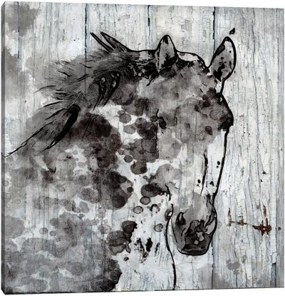 Winter Horse Canvas Art Print