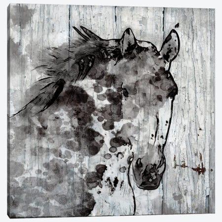 Winter Horse Canvas Print #ORL144} by Irena Orlov Canvas Art