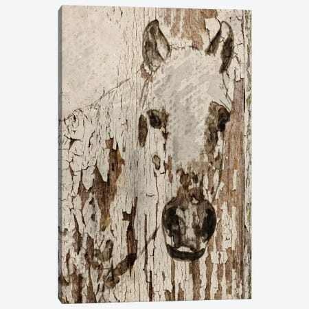 Champagne Horse Canvas Print #ORL14} by Irena Orlov Canvas Artwork