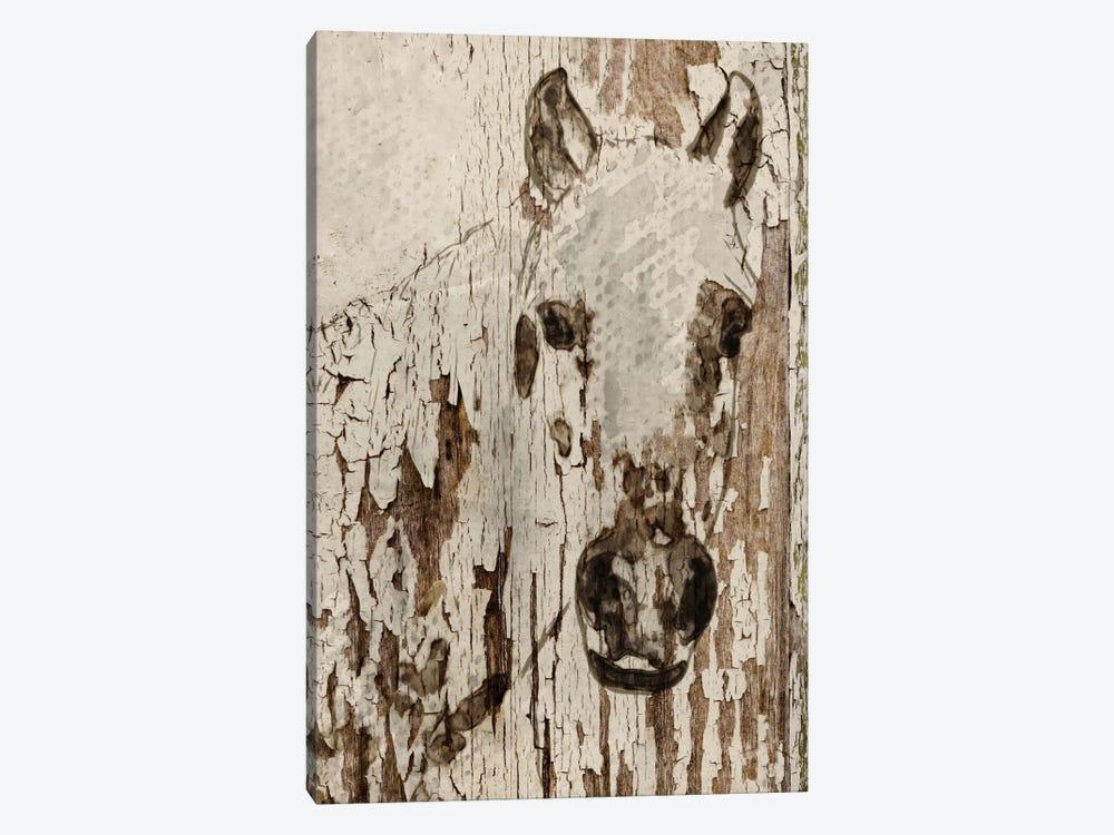 Champagne Horse by Irena Orlov 1-piece Art Print