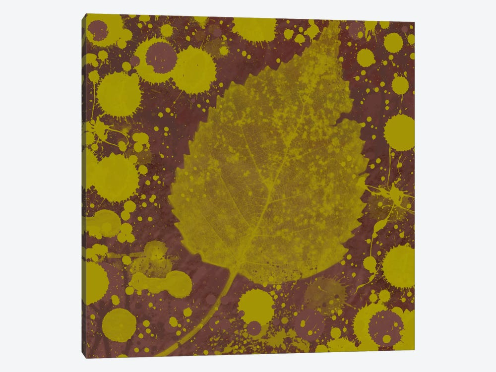 Botany Expressions I by Irena Orlov 1-piece Canvas Print