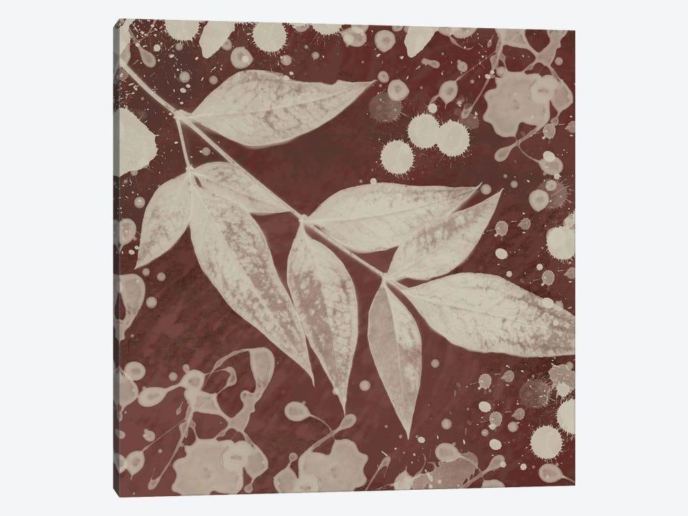 Botany Expressions III by Irena Orlov 1-piece Art Print