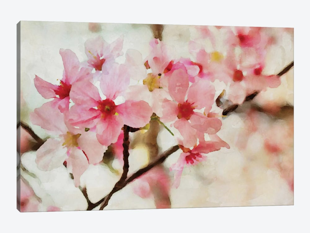 Cherry Flowers I 1-piece Canvas Wall Art