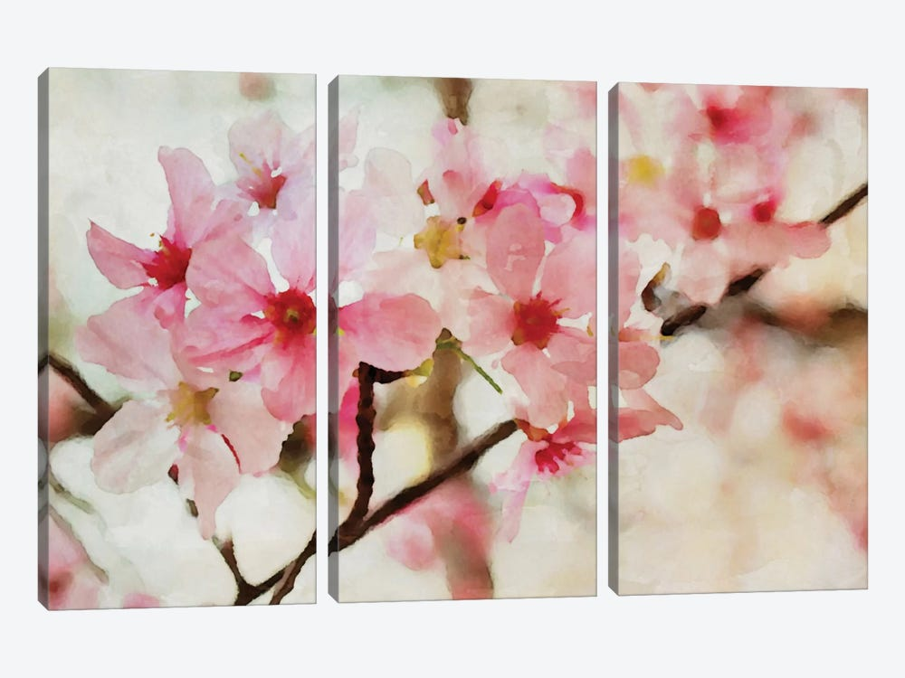 Cherry Flowers I by Irena Orlov 3-piece Canvas Art