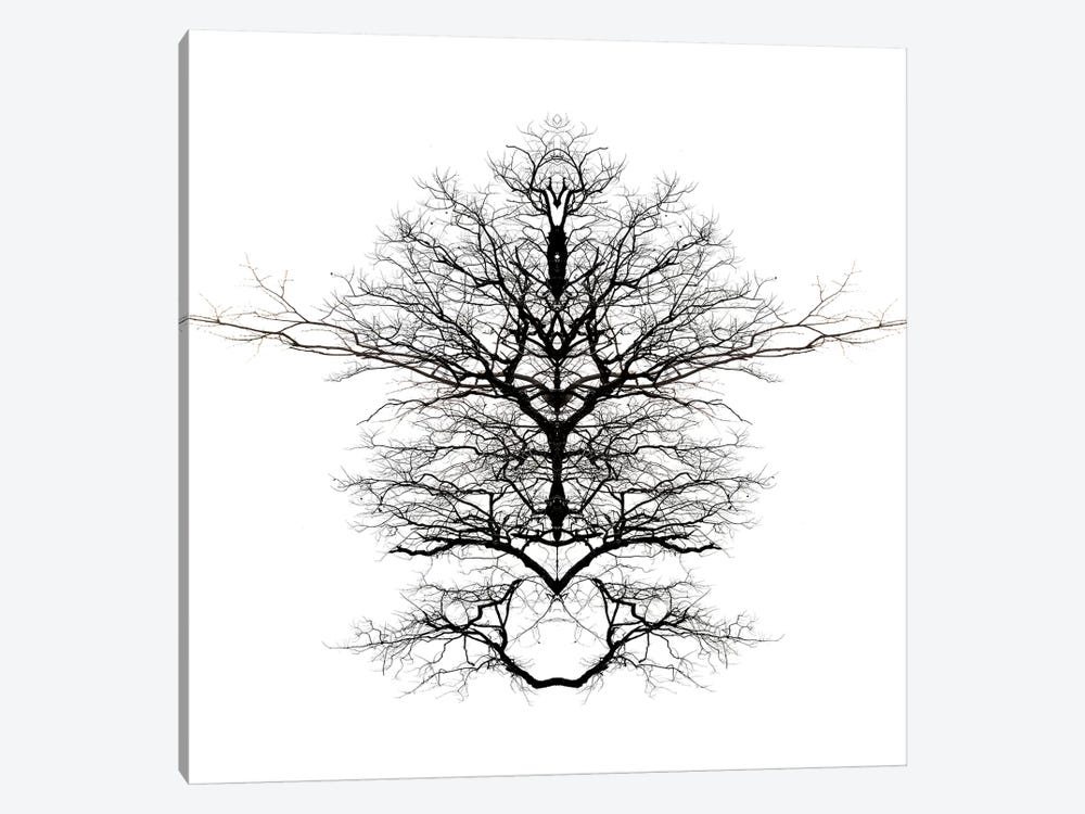 Infinite Complexity by Irena Orlov 1-piece Canvas Print