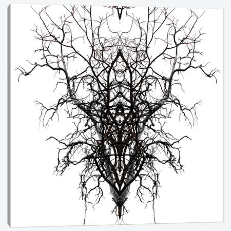Self-Similarity Canvas Print #ORL168} by Irena Orlov Canvas Print