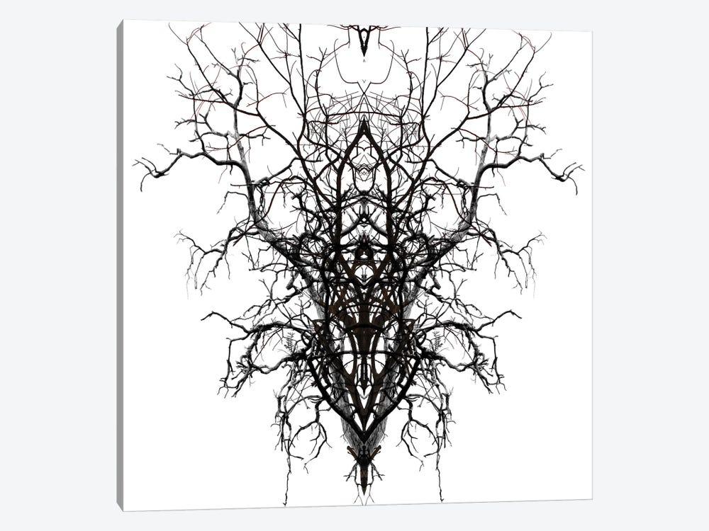 Self-Similarity by Irena Orlov 1-piece Canvas Art