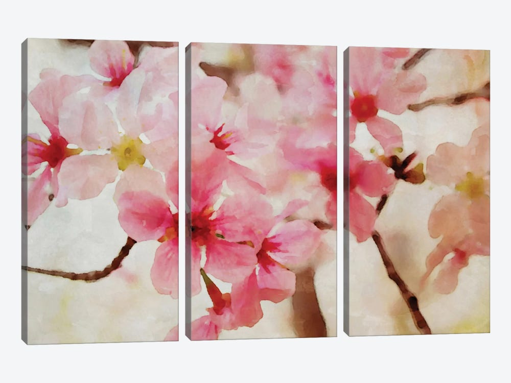 Cherry Flowers II by Irena Orlov 3-piece Canvas Print