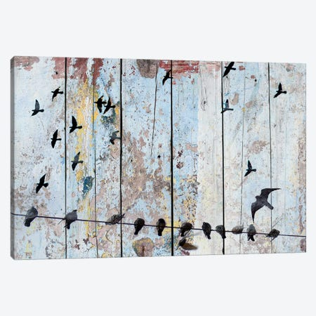 Birds on Wood III Canvas Print #ORL173} by Irena Orlov Canvas Artwork