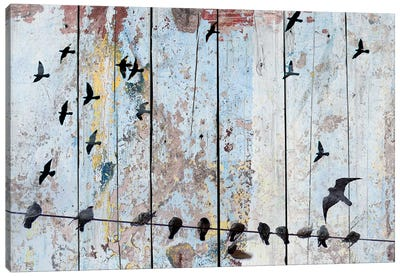 Birds on Wood III Canvas Art Print