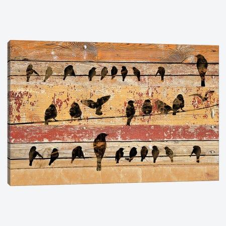 Birds on Wood V Canvas Print #ORL175} by Irena Orlov Canvas Art Print