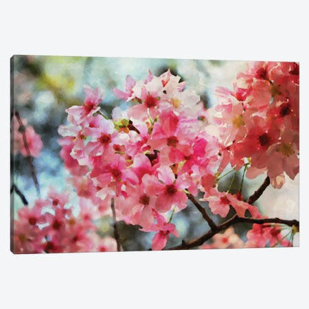 Cherry Flowers IV Canvas Print #ORL17} by Irena Orlov Canvas Wall Art