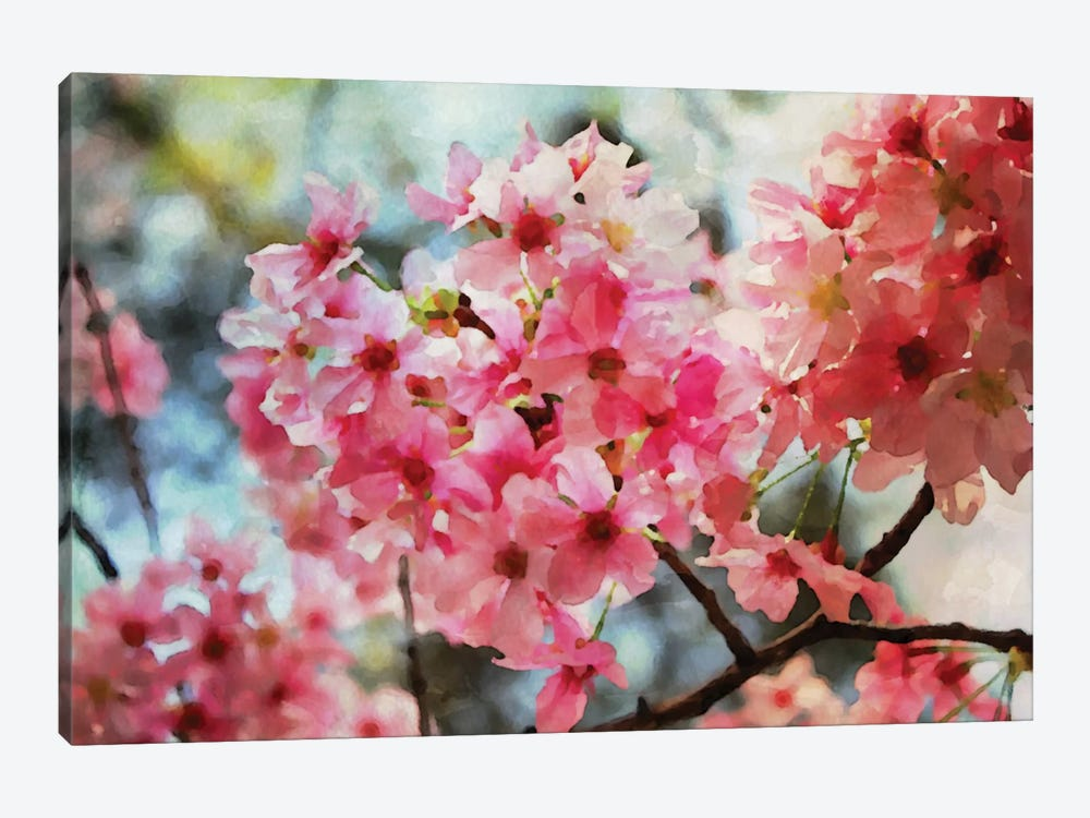 Cherry Flowers IV by Irena Orlov 1-piece Canvas Artwork