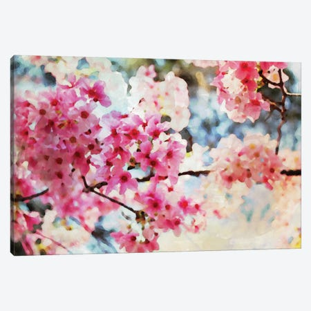Cherry Flowers V Canvas Print #ORL18} by Irena Orlov Art Print