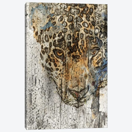 Chita Canvas Print #ORL190} by Irena Orlov Canvas Artwork