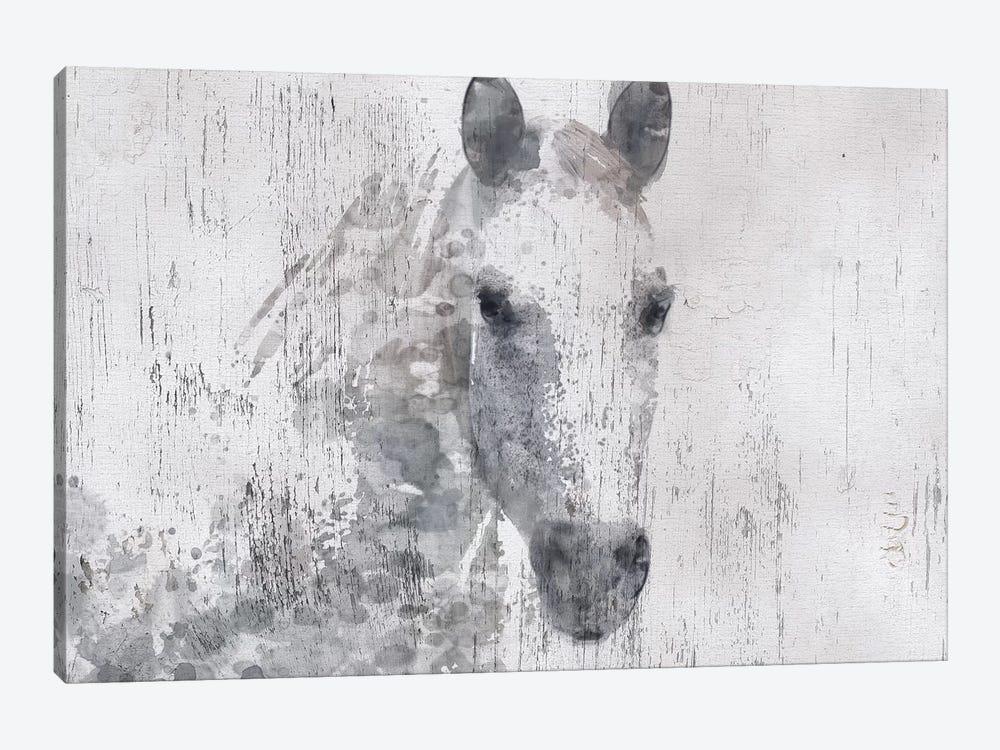 Dapple Horse I by Irena Orlov 1-piece Canvas Artwork