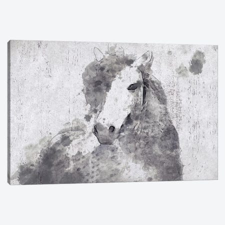 Dapple Horse II Canvas Print #ORL192} by Irena Orlov Canvas Art
