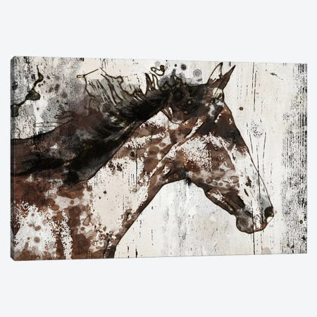 Galaxy Horse I Canvas Print #ORL195} by Irena Orlov Canvas Print