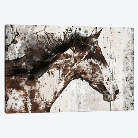 Galaxy Horse I Canvas Print #ORL195} by Irena Orlov Canvas Print
