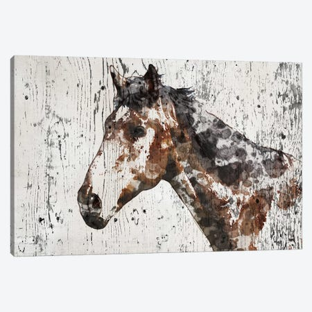 Galaxy Horse II Canvas Print #ORL196} by Irena Orlov Canvas Art Print
