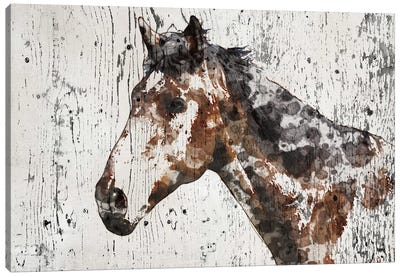 Galaxy Horse II Canvas Art Print