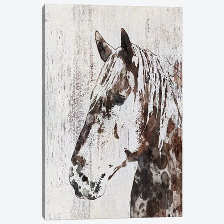 Galaxy Horse III Canvas Print #ORL197} by Irena Orlov Art Print
