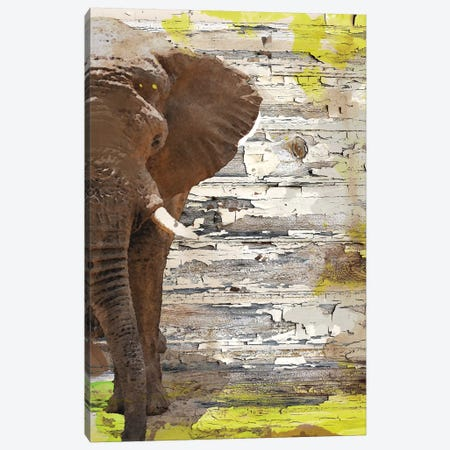 The Elephant I Canvas Print #ORL213} by Irena Orlov Art Print