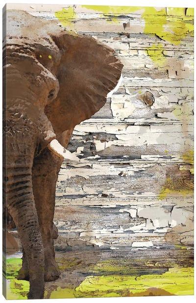 The Elephant I Canvas Art Print