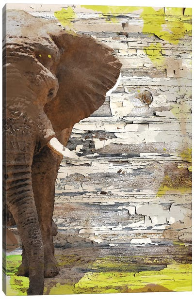 The Elephant I Canvas Art Print