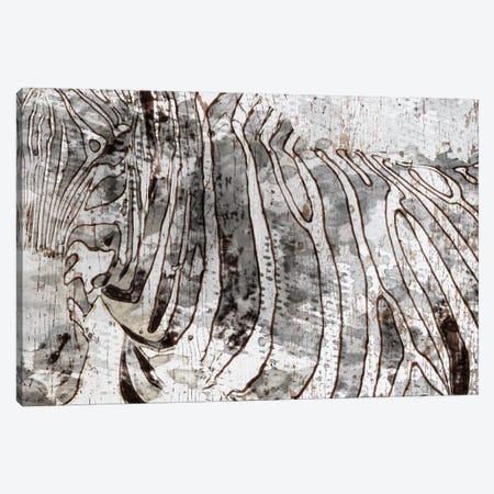 Zebra Mix Canvas Print #ORL219} by Irena Orlov Canvas Art Print