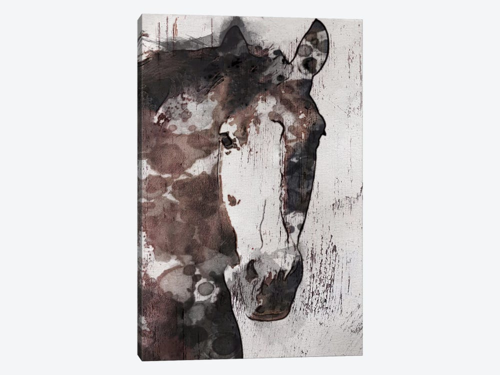 Gorgeous Horse IV by Irena Orlov 1-piece Canvas Print